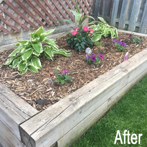 landscaping-18-after-2