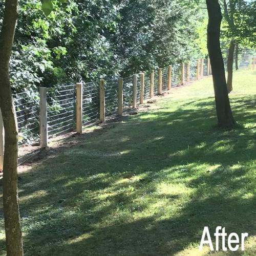 landscaping-18-after-3