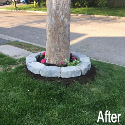 landscaping-18-after